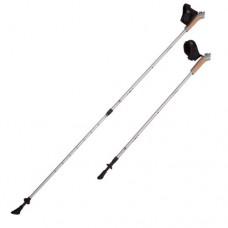 Палки для скандинавской ходьбы RGX NWS-02A