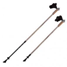 Палки для скандинавской ходьбы RGX NWS-03А