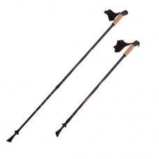Палки для скандинавской ходьбы RGX NWS-11