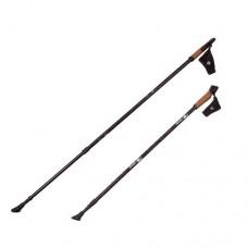 Палки для скандинавской ходьбы RGX NWS-19