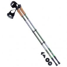 Палки для скандинавской ходьбы Berger Rainbow 77-135 black/green